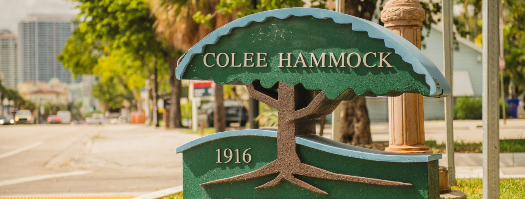 Colee Hammock Fort Lauderdale Real Estate